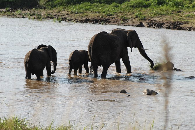 Full-Day Trip To The Ngorongoro Crater