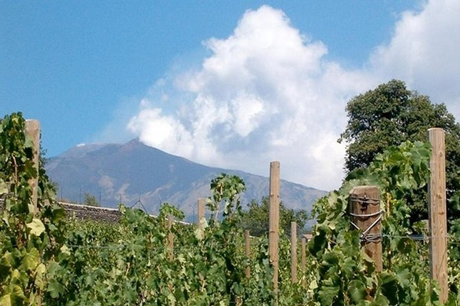 Private visit to the cellars of Etna with wine tasting