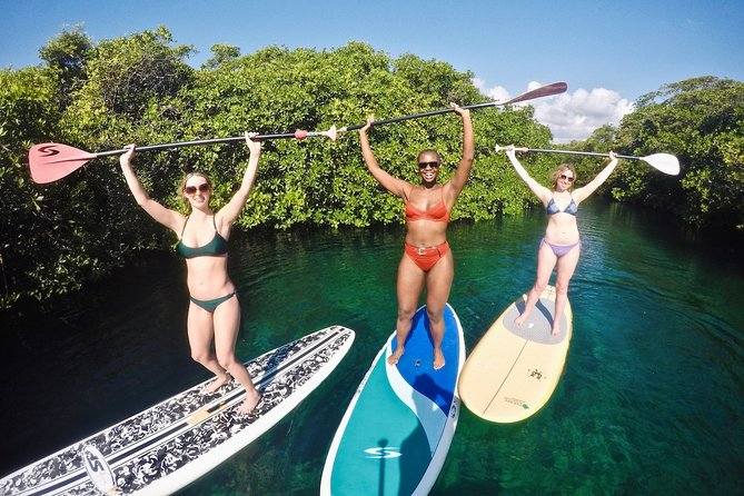 Cenote Paddleboarding and Snorkeling in Tulum