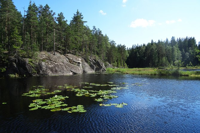 Private Half-Day Tour of Finnish Wilderness from Helsinki photo 6