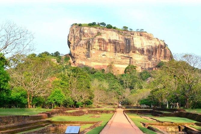 Sigiriya Rock, Dambulla Cave Temple and Minneriya Safari