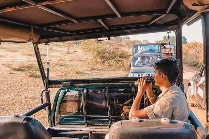 Yala Evening Safari – One Day Tour