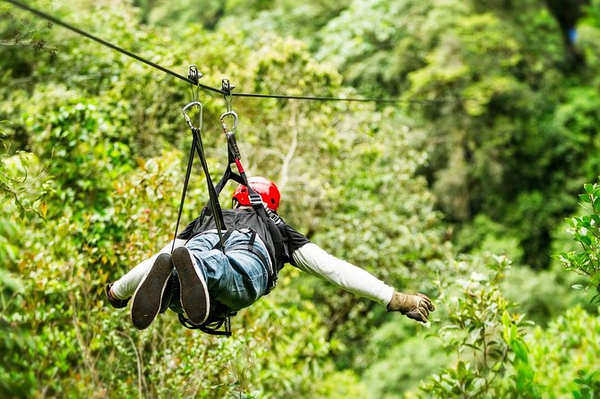 3 adrenaline activities Atvs Zipline and a swim experience in a cenote photo 7