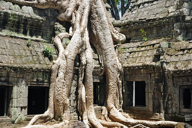 Private Tuk Tuk Tour toAngkor Wat andSmall Circle withTwoExtras