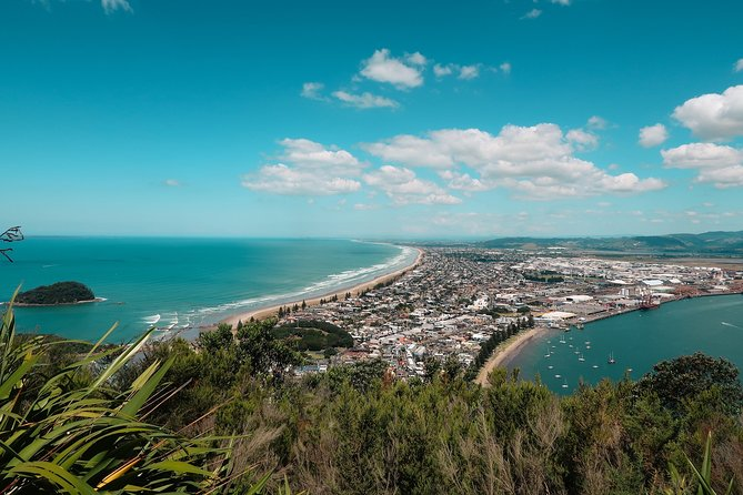 The best of Tauranga walking tour