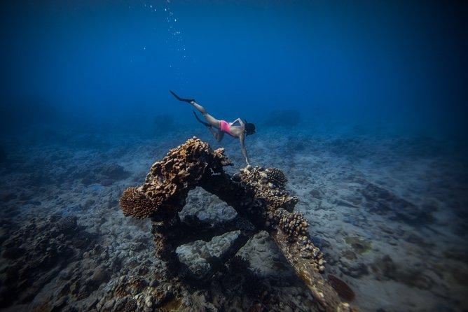 Shipwreck tour