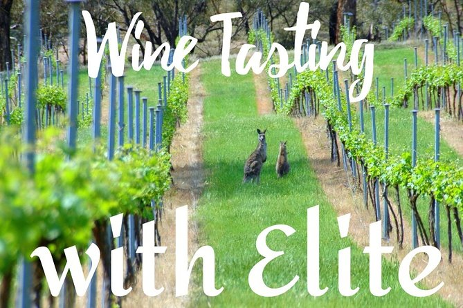 Six hour - plan your own wine and cheese tour Hunter Valley