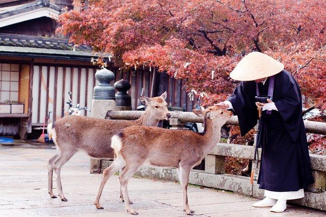 Romantic Tour In Nara