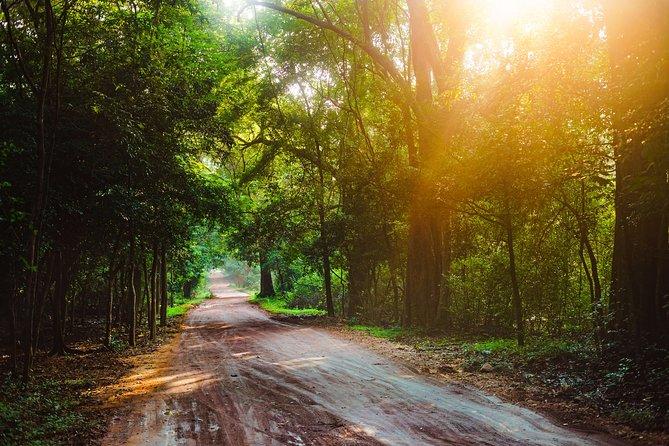 Trek to Sinharaja Forest Reserve