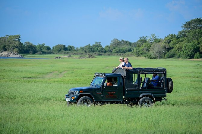 Wilpattu Morning Safari - One Day Tour