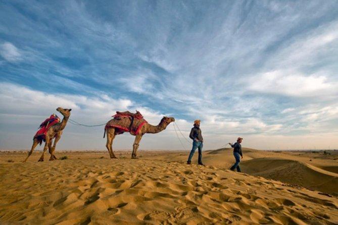 Jaisalmer Thar Camel Safari With Folk Dance & Marwari Dinner