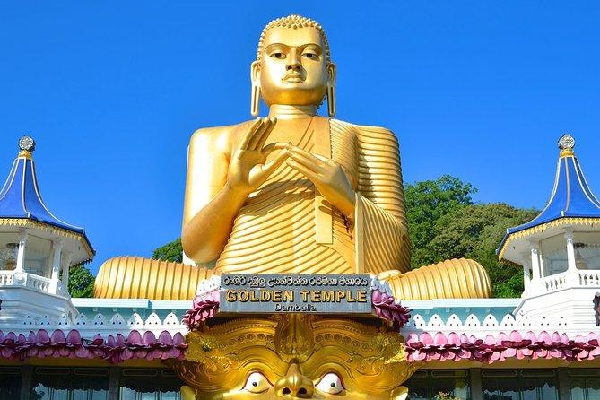 Explore Sigirya and Dambulla Day Tour