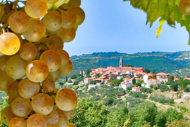 Slovenian Istria | Private off cruise excursion from Koper