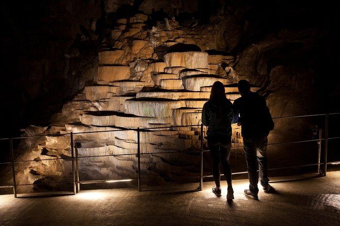Private Half-Day Skocjan Caves Tour from Trieste
