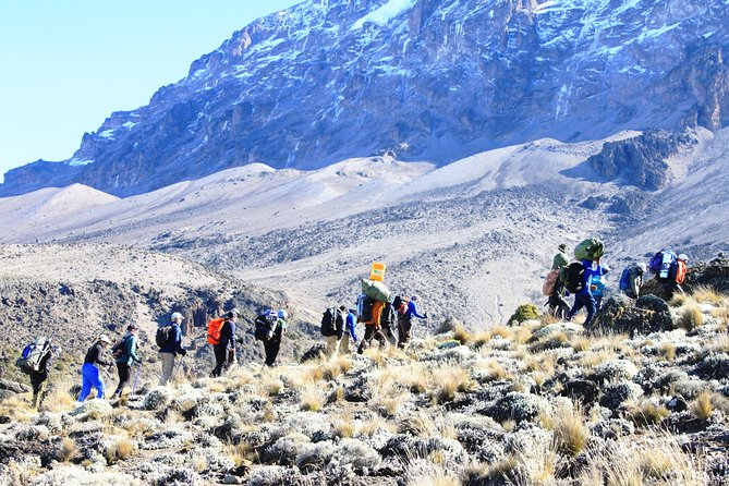 Kilimanjaro - 7 days 6 Nights - Rongai Route