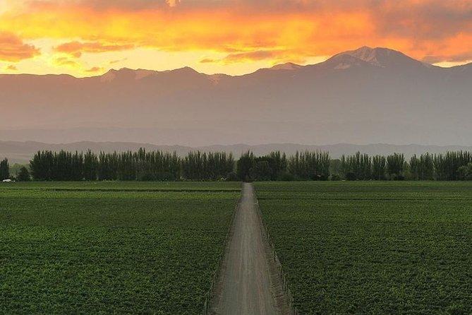 4-Days Experiencing Mendoza - Secrets of Wine & Nature!