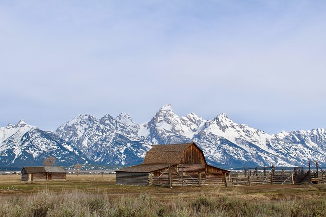 Grand Teton Half Day Tour