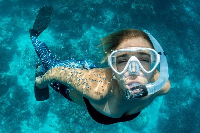 Snorkeling in Dhiffushi