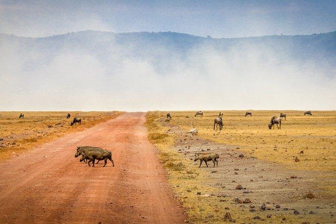3 Days Private Adventure Tour in Arusha