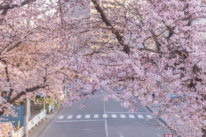 Romantic Tour In Saitama