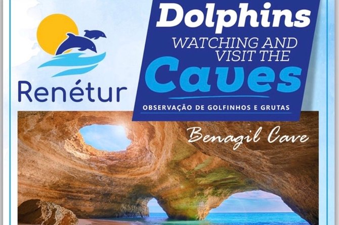 Dolphins Watching and Visit Caves photo 3