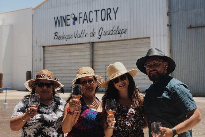 Baja Tour Guide all inclusive wine tour
