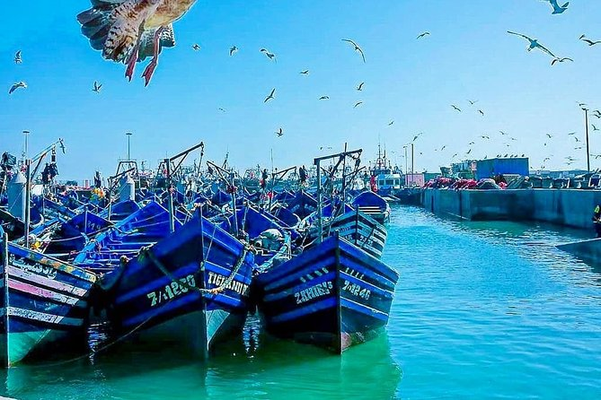 Marrakech to Essaouira Private Full-Day Tour with Lunch