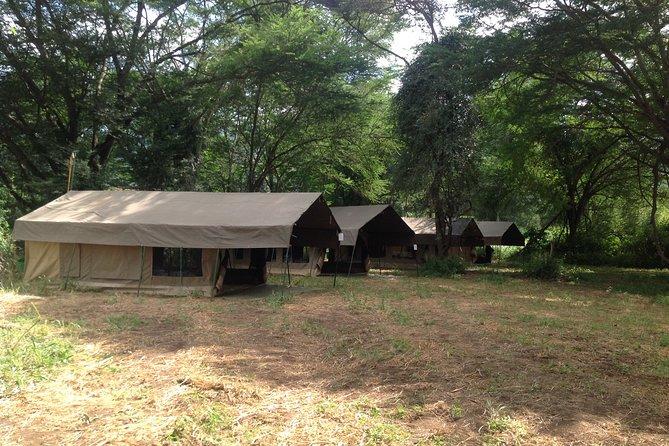 Tanzania 8 Day Private Safari Experience