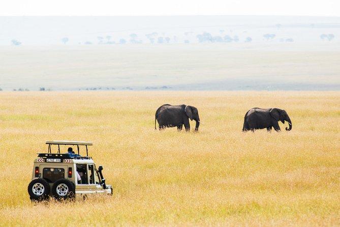 11-Day Private Classic Safari in Southern Tanzania