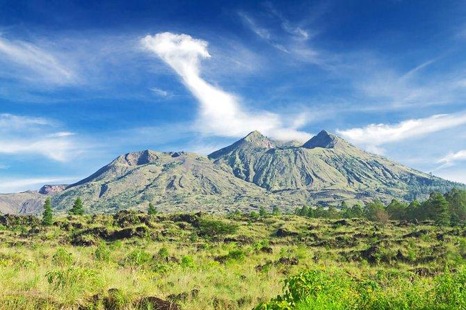 Bali Private Tour & Free Choose Destination