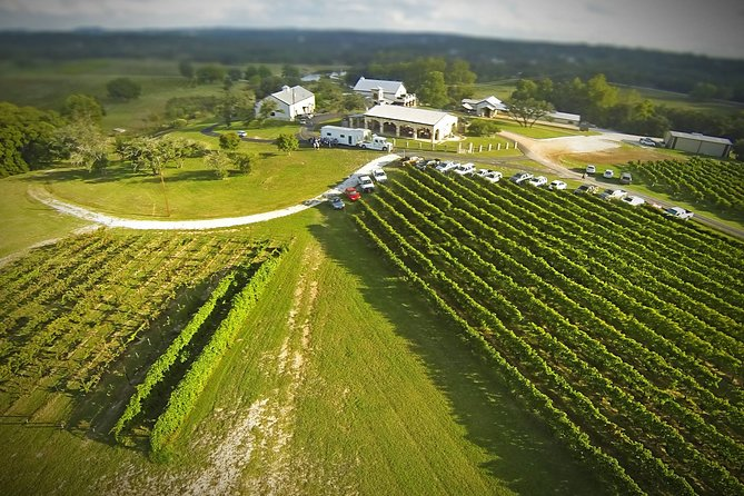 Hill Country Estate Vineyard Tour in Marble Falls
