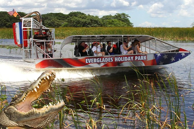 Everglades Airboat Journey and Alligator Show with Free Picture