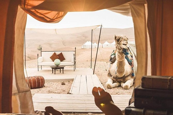 Full-Day Private Camel Ride in Agafay Desert with Lunch