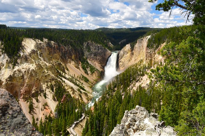 PRIVATE Yellowstone Tour: Famous Sites, Wildlife, Easy Hikes, & Lunch included!