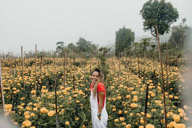 Full-Day Private Trip in Bali Countryside