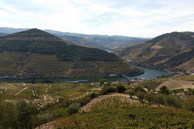 Private Douro Valley Tour from Porto