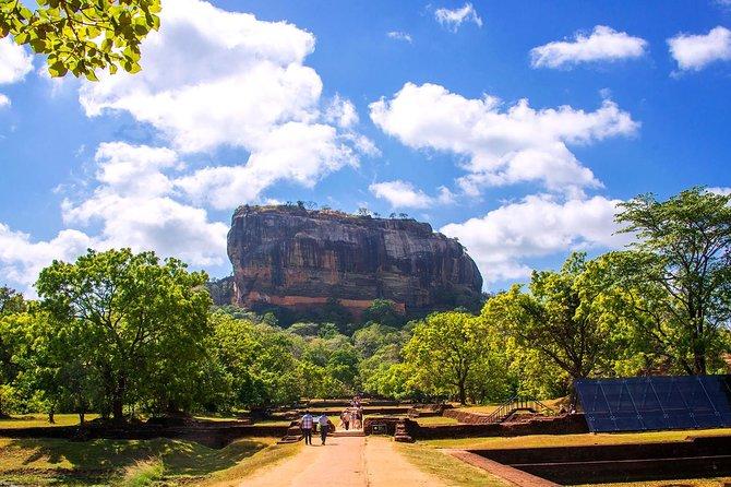 Day Trip to Sigiriya, Dambulla and Minneriya Safari