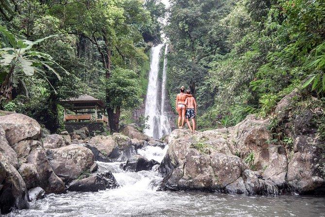 Ubud Day Tour: Balinese Lifestyle Tour