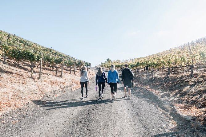 Small-Group Malibu Wine Hike