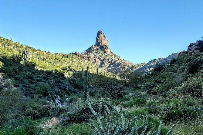 Phoenix Hiking Tours