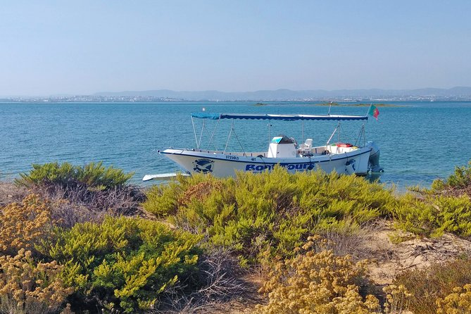 4-Hour Private Boat Tour in Ria Formosa