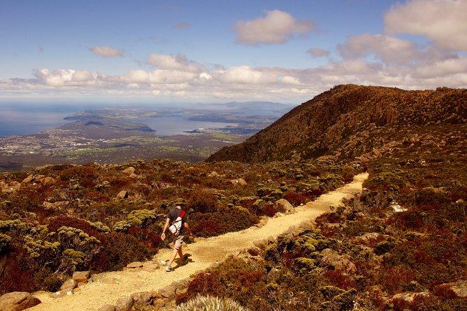 kunanyi / Mt. Wellington Guided Hiking Tour