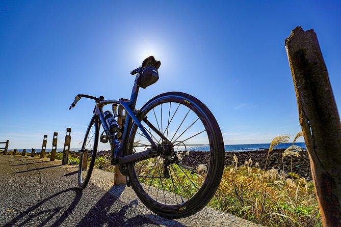 Rental Bike Rental E-car