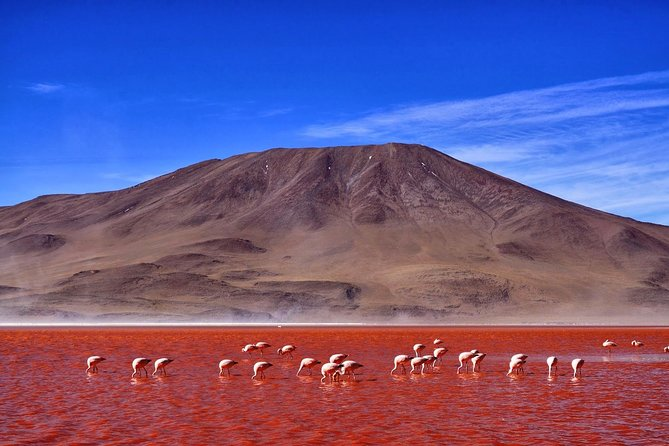 6-Days Discovering 2 of the World's Largest Salt Flats, Atacama & Uyuni
