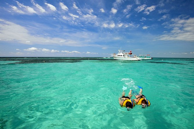 From Miami: Key West with options like Snorkel with unlimited drinks