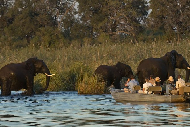Full-Day Zambezi River Canoeing Experience with Pickup