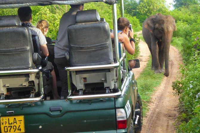 Yala National Park – An Epic Adventure