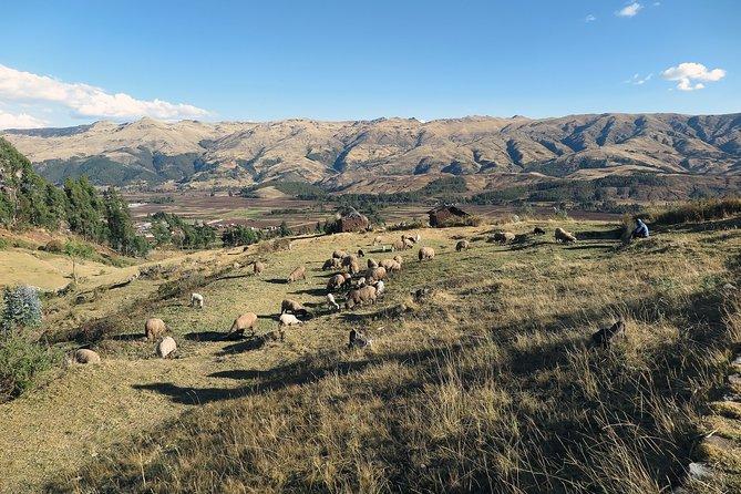 Romantic tour in Cusco