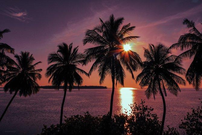 Sunset Cruise and Night Fishing in Huraa