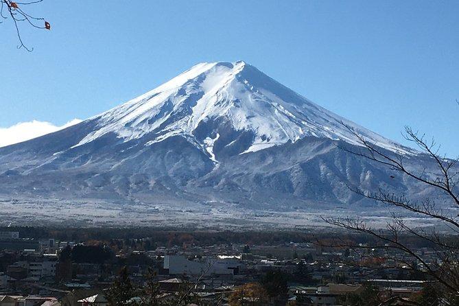 Exciting Mt. Fuji - Online Tour